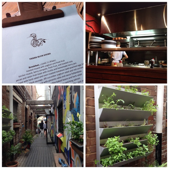 Clockwise from top left: menu, behind the counter, the vertical garden by the side of the restaurant, the colourful alley leading to the back